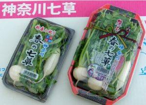 miura-hanekko.com